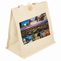 Canvas Tote Bag Gustavus Pics